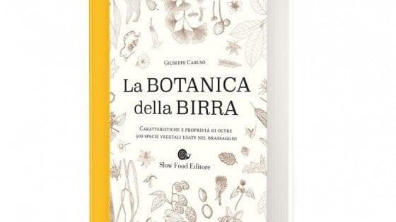 Malva o chinino, un'enciclopedia delle piante più usate nelle birre