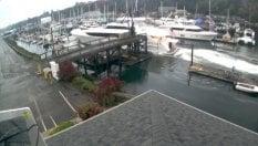 Fa schiantare yacht da 21 milioni di euro