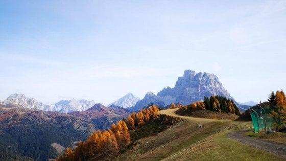 In Italia aumentano i boschi, +5% di superficie dal 2005