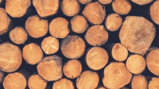 Scaldarsi senza scaldare il pianeta: è il legno il miglior amico dell'ambiente
