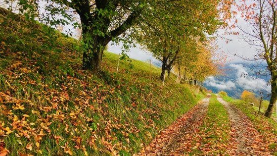 Foliage, borghi, lentezza. Alto Adige d'autunno