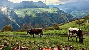 Alto Adige: colori d'autunno