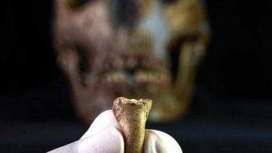 Neanderthal, l'ultimo ornamento: un ciondolo dall'artiglio di un'aquila