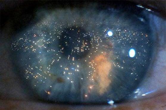 'Blade Runner', il futuro è oggi. Ma il mondo nel 2019 non è quello immaginato da Philip Dick