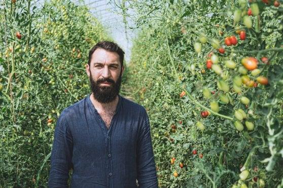 """La seconda vita di Alex, dalla laurea alla Bocconi alla vita da contadino: """"Ho voluto salvare l'orto di famiglia"""""""
