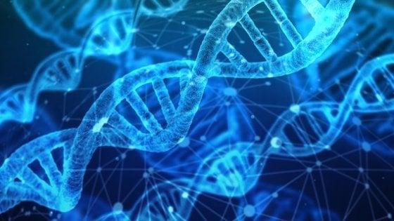 Usa, test del DNA per embrioni su misura