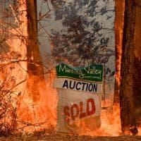 Australia, oltre 80 focolai di incendi: proclamato lo stato di emergenza
