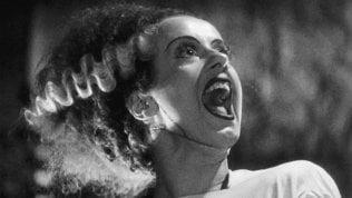 Torino film festival all'insegna dell'horror e delle donne