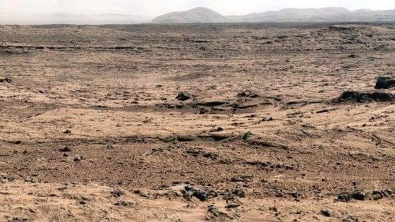 """Insetti su Marte, la strana teoria dell'entomologo Usa. Gli esperti: """"Le foto non bastano"""""""