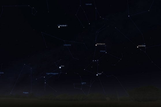 Sciame di meteore in arrivo: lo spettacolo all'alba
