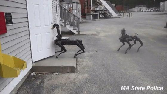 Usa, i cani robot già usati dalla polizia. Ed è subito polemica