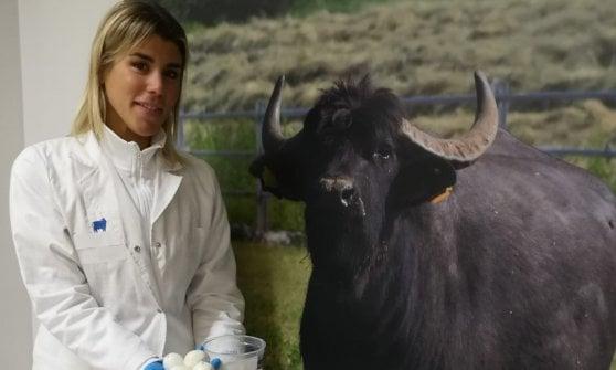 La Mozzarella di bufala non è più un affare (solo) da maschi: prime due donne iscritte al corso da casaro