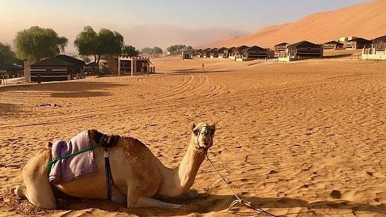Dune, tartarughe e non solo. Oman: eden d'inverno