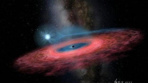 Scoperto un buco nero impossibile, è circa 70 volte il Sole