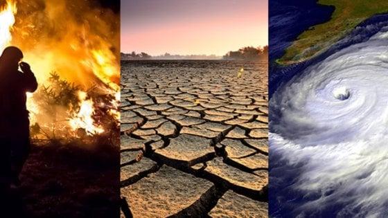 Cinque modi per contrastare lo stress da cambiamento del clima