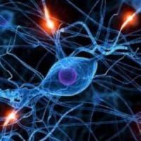 Creati i primi neuroni artificiali. Cureranno malattie croniche e degenerative