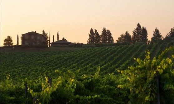 Una veduta del resort-winery Rosewood Castiglion del Bosco