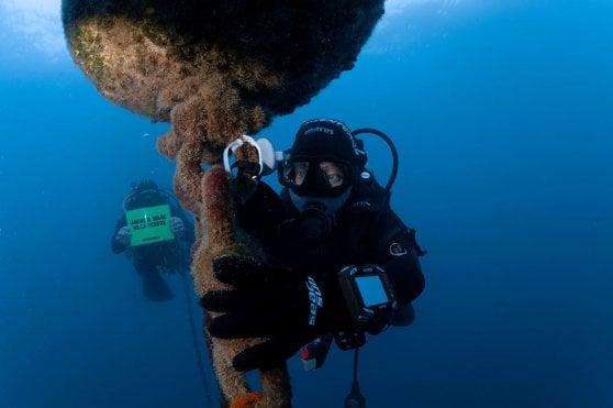 Cartina Muta Bacino Del Mediterraneo.Greenpeace Il Mediterraneo Si Alza Di 2 4 Mm All Anno La Repubblica