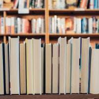 Più libri nelle biblioteche scolastiche, ma le strutture si impoveriscono