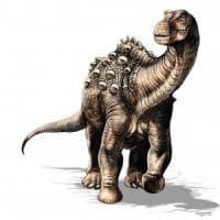Ecuador, scoperta nuova specie di dinosauro