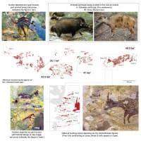 Arte rupestre, in Indonesia la più antica scena di caccia