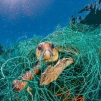 Ocean Plastic Innovation Challange, sul podio Cile, Francia e Germania