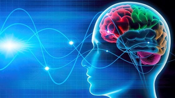 La nuova interfaccia? Il nostro cervello. E sarà l'internet dei sensi