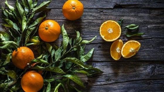 Consumi, arrivano sulle tavole le prime clementine sostenibili