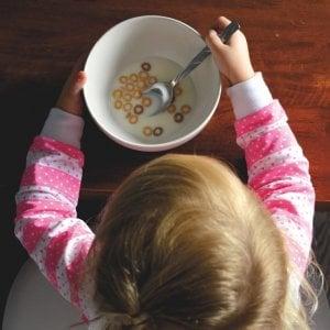 L'alunno ha il diritto di portare il pranzo da casa. Mensa non è obbligatoria