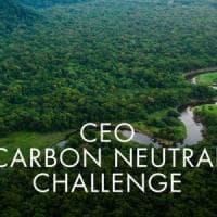 Lavazza accetta la sfida per la riduzione delle emissioni di gas serra