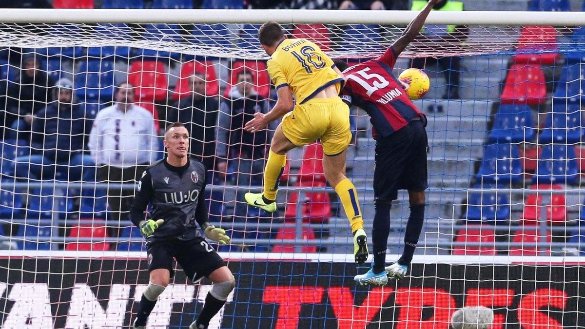 Bologna-Verona 1-1: tra parate di Skorupski e proteste rossoblù