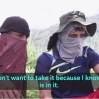 """Colombia, """"È piena di schifezze"""". Il messaggio di due giovani coltivatori di cocaina a un..."""