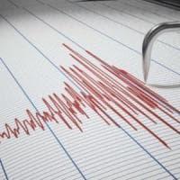 Terremoti: scossa di magnitudo 3.6 nel Foggiano