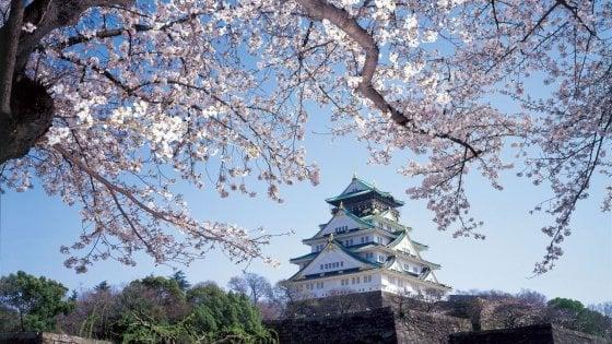 Scoprite il Giappone e la sua cultura