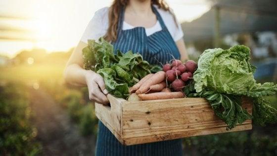 """L'impegno di AssoBio: """"Riconoscere il giusto prezzo dei prodotti biologici"""""""