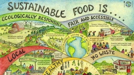 Al mondo siamo 7.7 miliardi di persone e produciamo cibo per nutrirne solo 3.4 in modo sostenibile