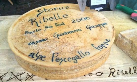 Rari e buonissimi, i migliori formaggi italiani in mostra a Roma
