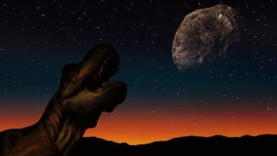 Spazzati via i dinosauri, comparvero subito i cianobatteri