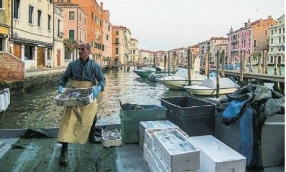 Il cuore di Rialto, uno dei mercati più antichi d'Italia