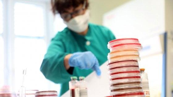 Coronavirus, domande e risposte: la trasmissione, le cure, gli effetti