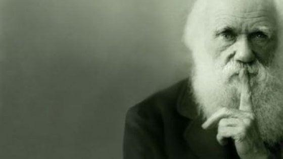 """Darwin Day, un giorno dedicato al """"padre"""" delle nostre origini"""
