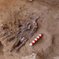 Un fiore nella tomba: così Neanderthal seppelliva i propri cari