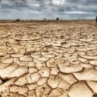 Terra bruciata. Su Scienze, perché il nuovo clima fa appassire l'agricoltura