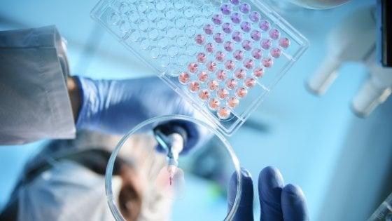 Scoperto super antibiotico grazie all'intelligenza artificiale