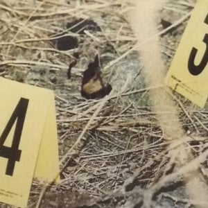 Mafia, 23 omicidi in 40 anni: 23 arresti a Catania