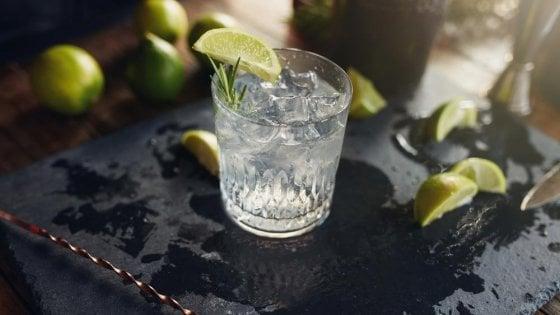 Gin, il distillato che l'Italia ha adottato