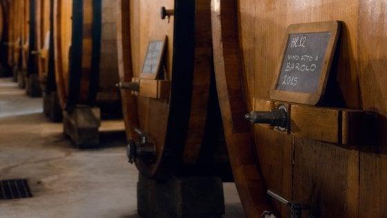 Sua maestà il Barolo: ecco cinque bottiglie (meno note) da non perdere
