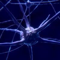 I primi neuroni geneticamente modificati e controllati elettricamente