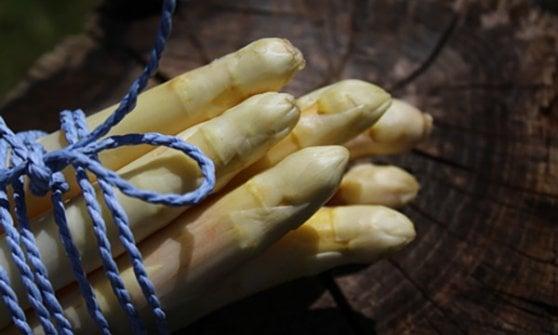 E' il momento degli asparagi: impariamo a conoscerli (e cucinarli)