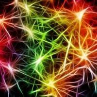 Nanotecnologie per ascoltare il dialogo tra cellule del cervello
